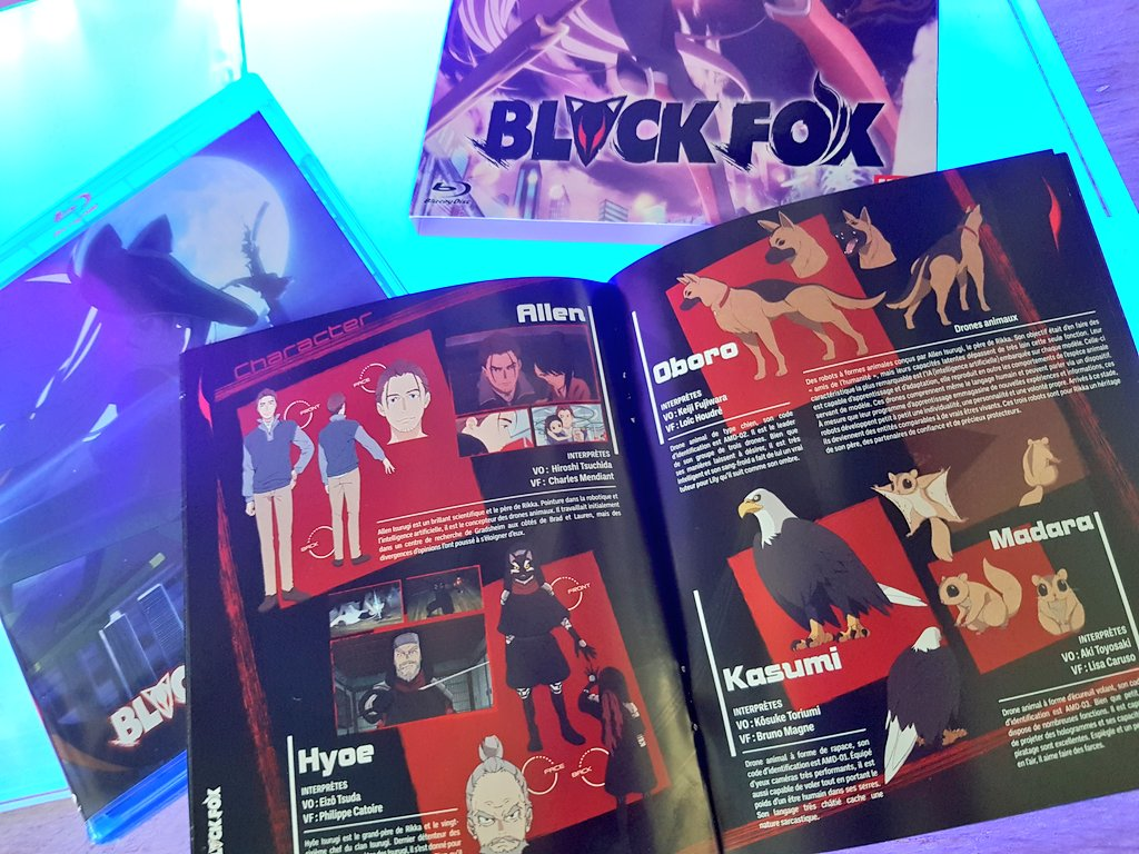Avis Blu-ray Anime : Black Fox (éditions Kazé)